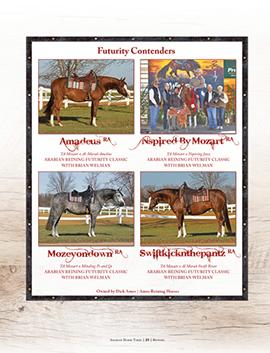 Ames Reining Horses – Scottsdale 2018 Condenders