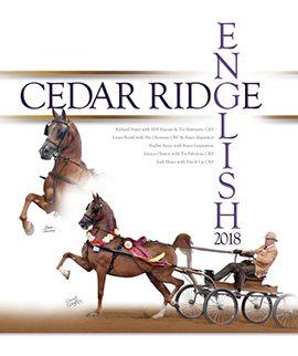 2018 English at Cedar Ridge