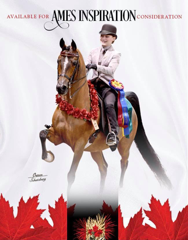 For Your Consideration at Canadian Nationals