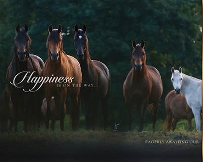 Happiness is on the way …