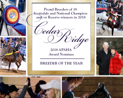 2018 APAHA Breeder of the Year Nomination
