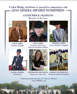 Announcing Our 2018 APAHA Nominees