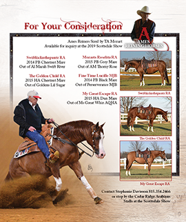 Ames Reining Horses