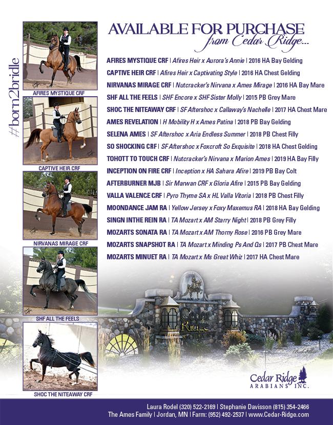 Cedar Ridge Offers…