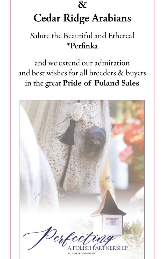 Best Wishes to Pride of Poland